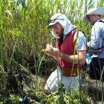 documenting plant species