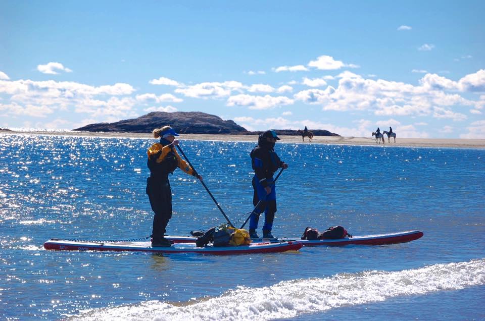 SUP paddling into shore