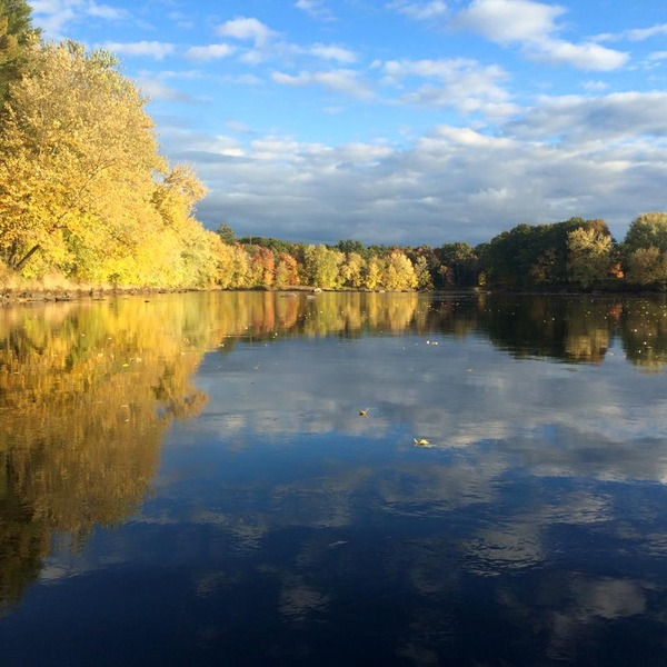 2016-The Magic of Rivers, You, A New Year, and exciting programs
