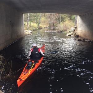 paddling underneath a bridge