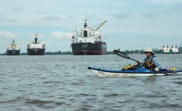 2009_Mississippi_Barges
