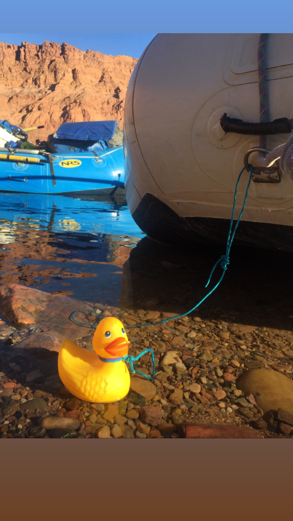 rubber ducky on the river